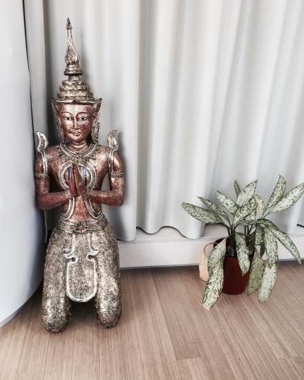 Bodhi Thaï